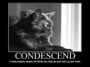condescend