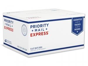EMS (Express Mail Service)